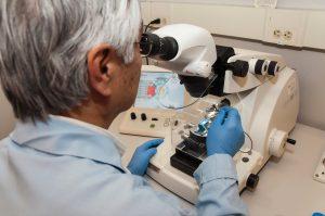 technician using a microtome